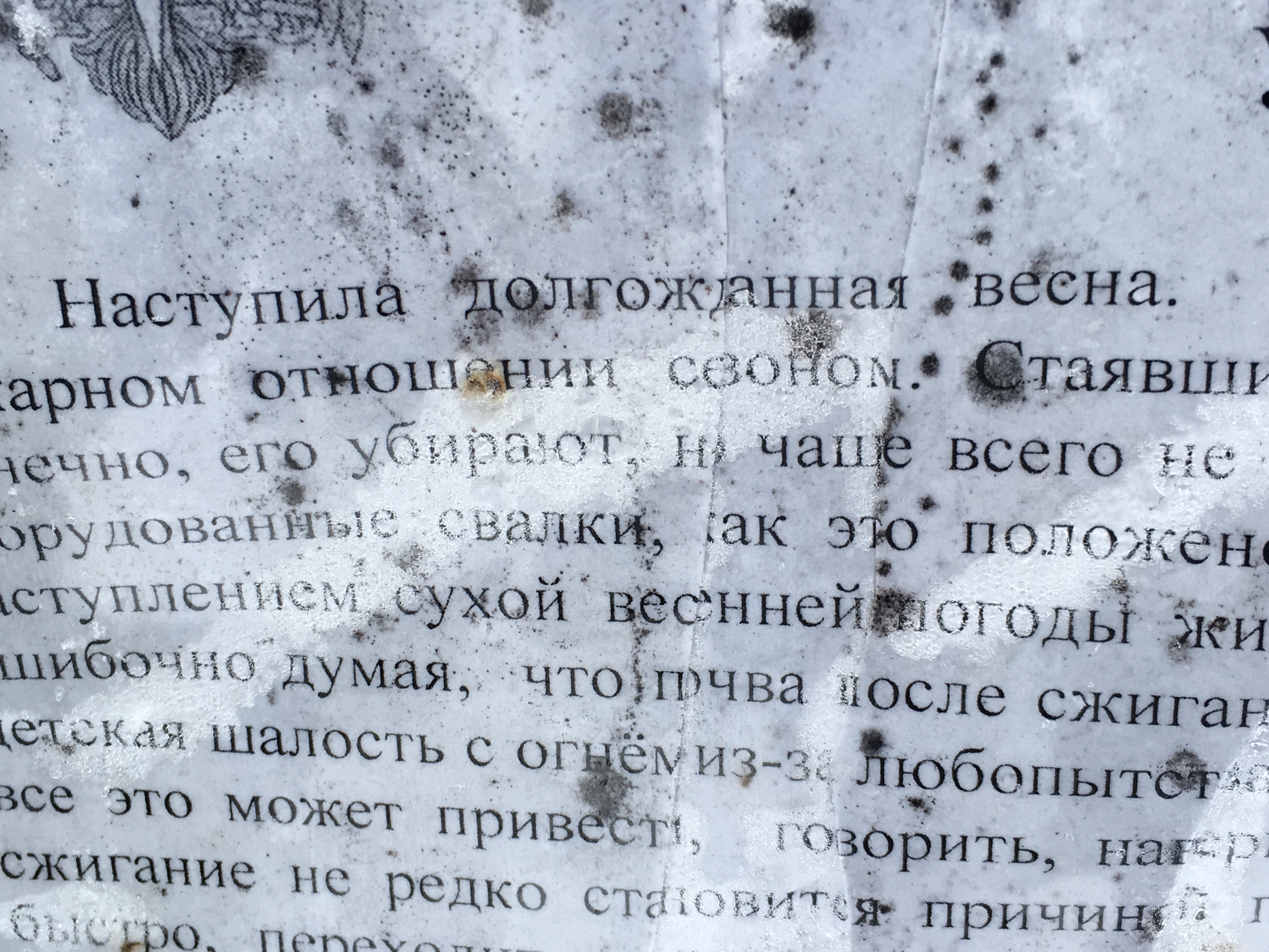 bcea_img_4641